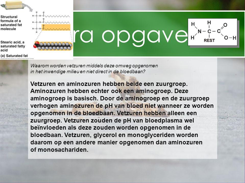 Extra opgaven Vetzuren en aminozuren hebben beide een zuurgroep.