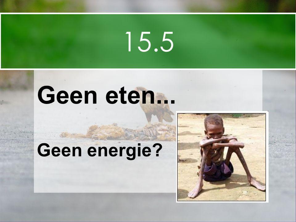 15.5 Geen eten... Geen energie