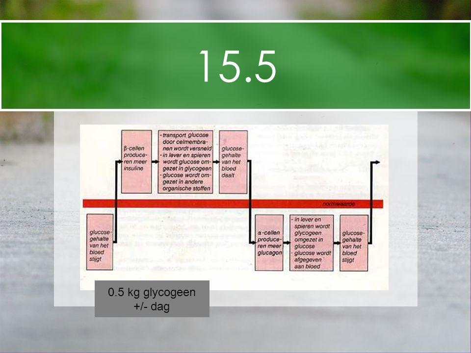 15.5 0.5 kg glycogeen +/- dag