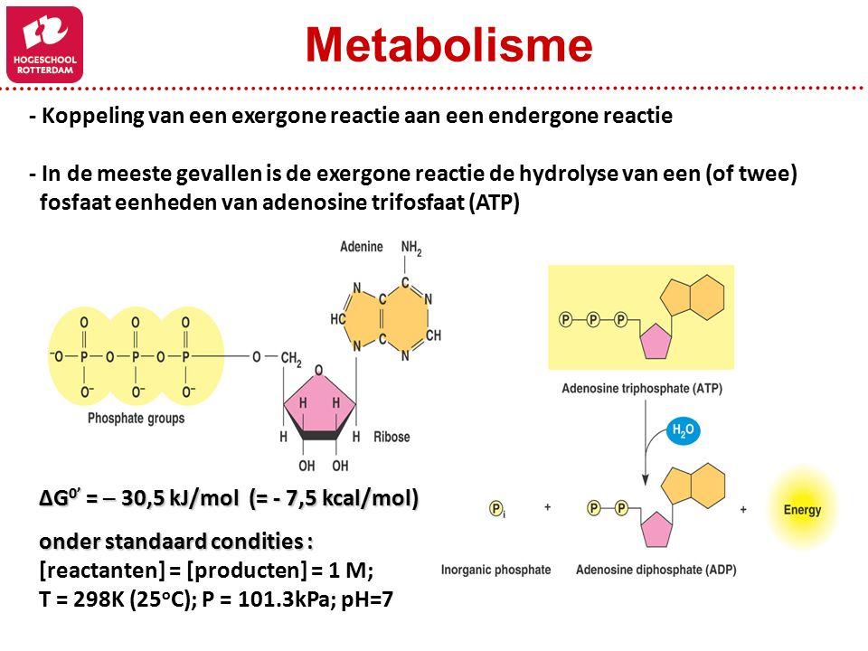 Metabolisme - Koppeling van een exergone reactie aan een endergone reactie.