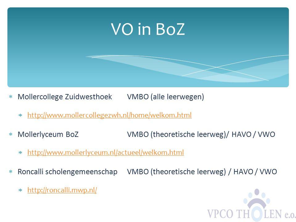 VO in BoZ Mollercollege Zuidwesthoek VMBO (alle leerwegen)