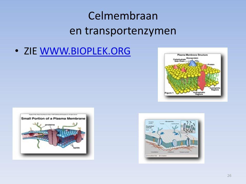 Celmembraan en transportenzymen