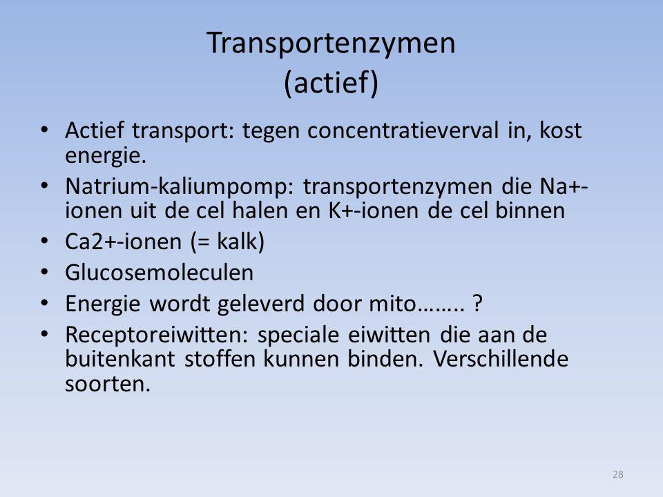 Transportenzymen (actief)