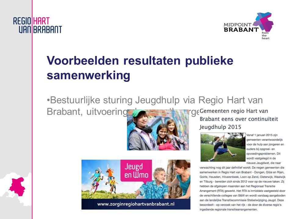 Voorbeelden resultaten publieke samenwerking