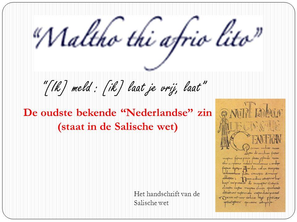 De oudste bekende Nederlandse zin (staat in de Salische wet)
