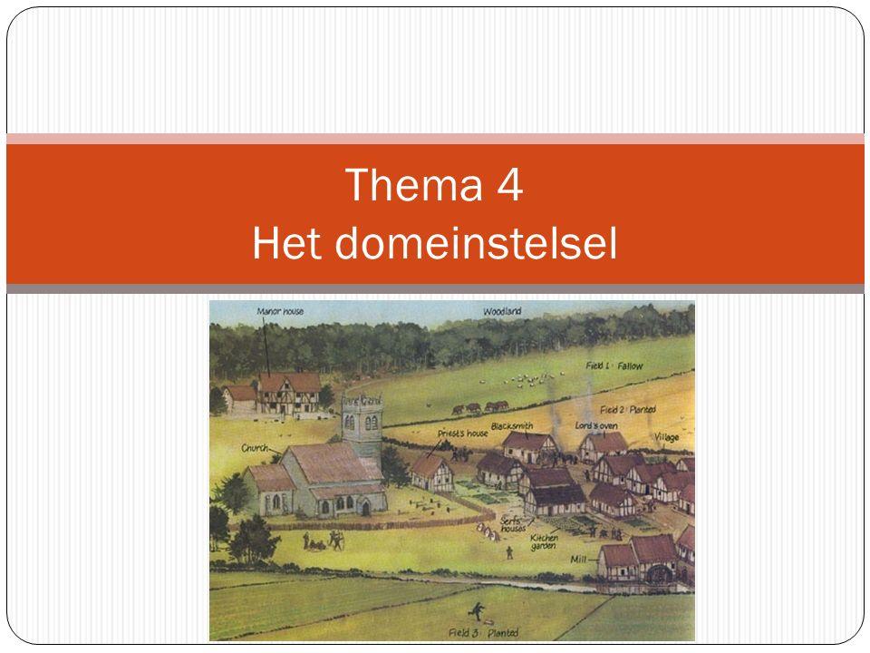 Thema 4 Het domeinstelsel