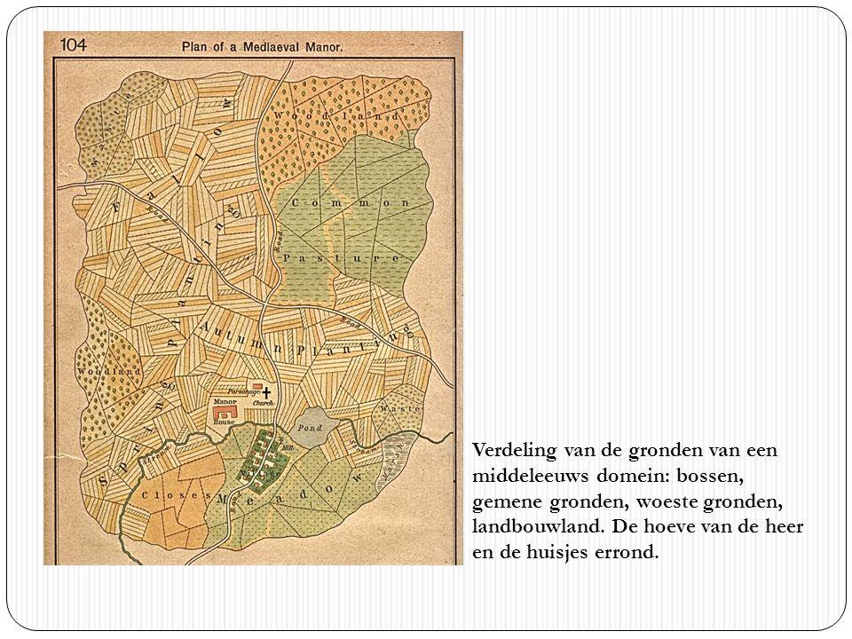 Verdeling van de gronden van een middeleeuws domein: bossen, gemene gronden, woeste gronden, landbouwland.
