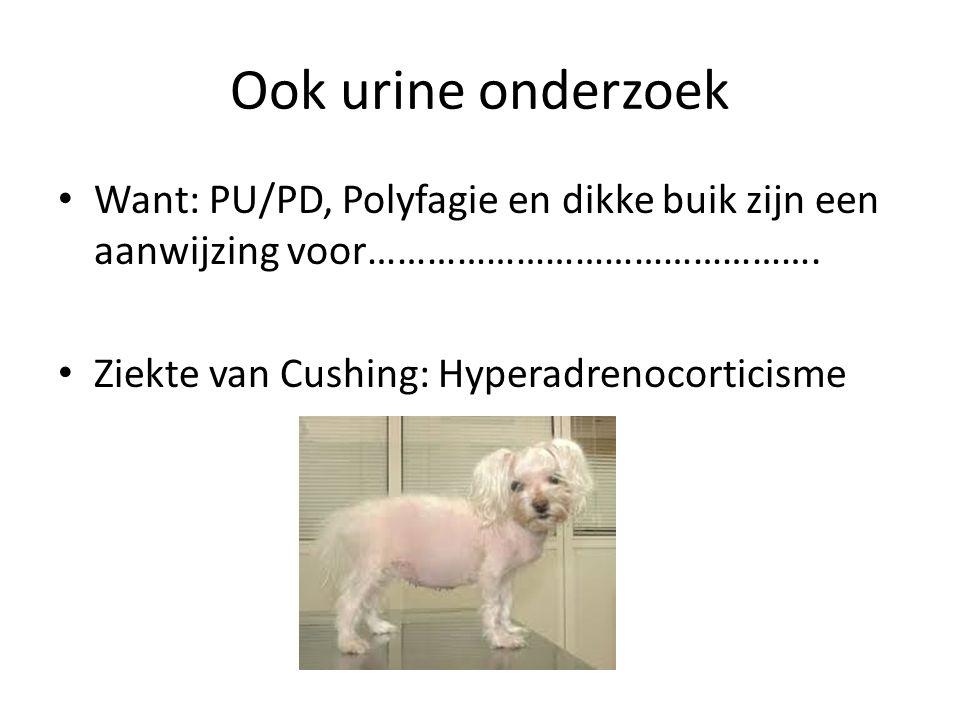 Ook urine onderzoek Want: PU/PD, Polyfagie en dikke buik zijn een aanwijzing voor……………………………………….