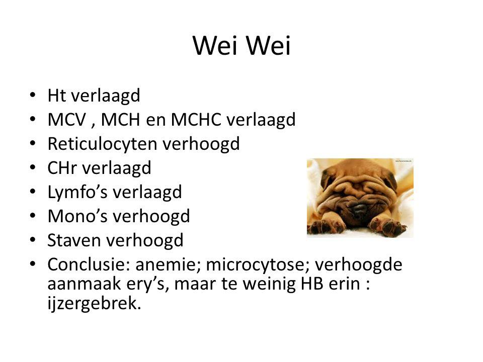 Wei Wei Ht verlaagd MCV , MCH en MCHC verlaagd Reticulocyten verhoogd