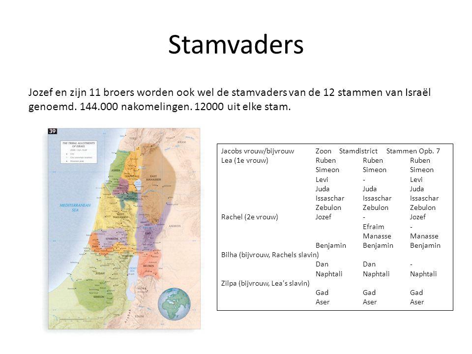 Stamvaders Jozef en zijn 11 broers worden ook wel de stamvaders van de 12 stammen van Israël genoemd. 144.000 nakomelingen. 12000 uit elke stam.