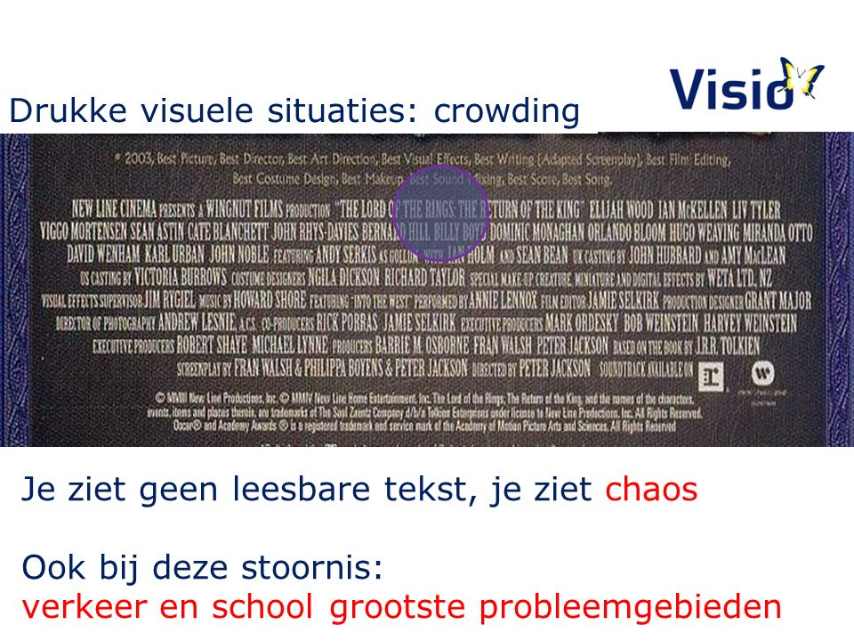 Drukke visuele situaties: crowding