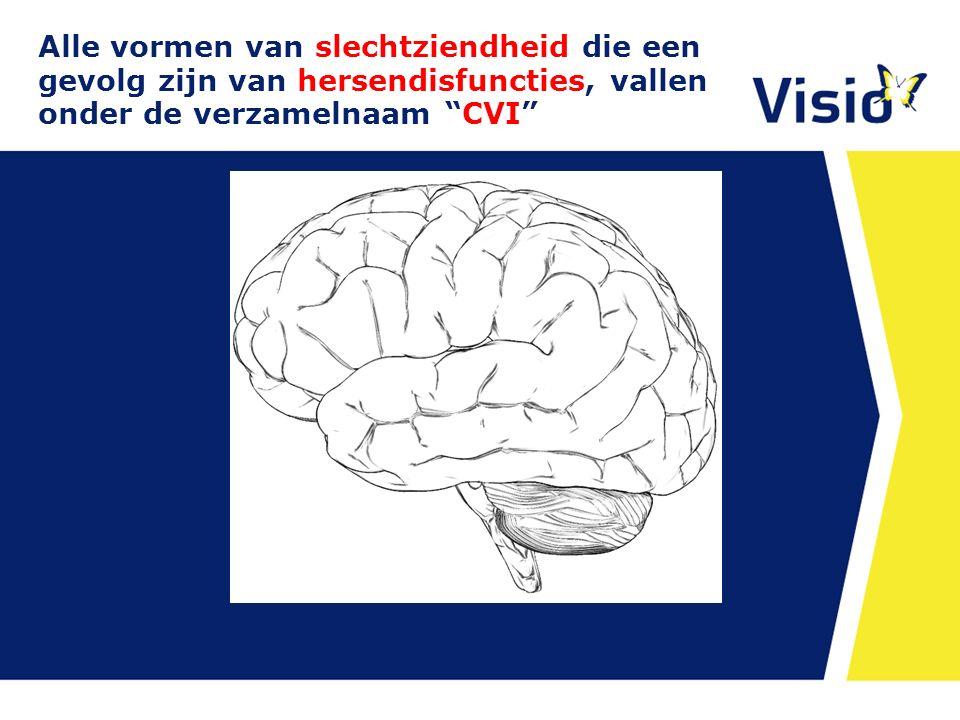 Alle vormen van slechtziendheid die een gevolg zijn van hersendisfuncties, vallen onder de verzamelnaam CVI