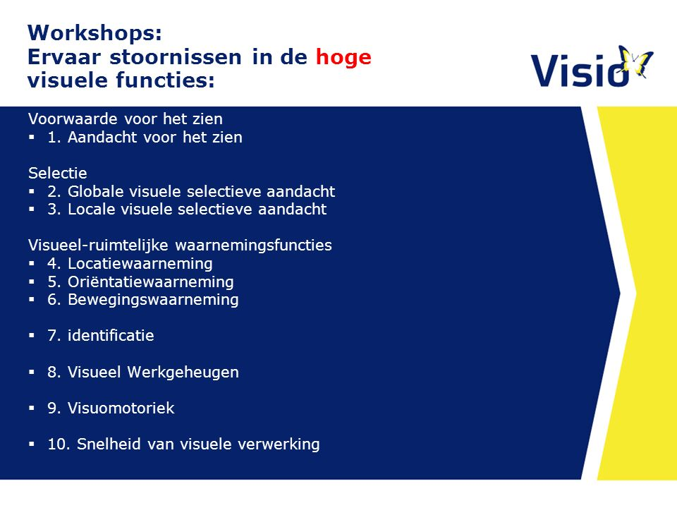 Workshops: Ervaar stoornissen in de hoge visuele functies: