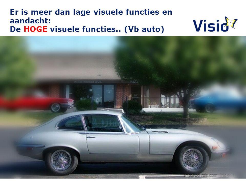 Er is meer dan lage visuele functies en aandacht: De HOGE visuele functies.. (Vb auto)