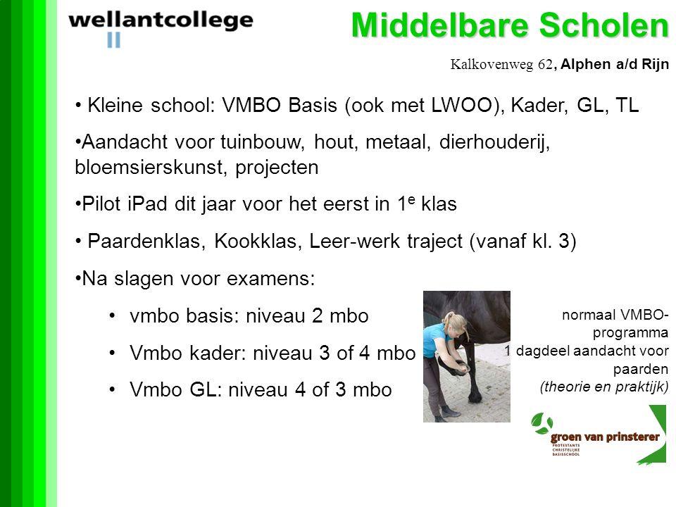 Middelbare Scholen Kalkovenweg 62, Alphen a/d Rijn. Kleine school: VMBO Basis (ook met LWOO), Kader, GL, TL.