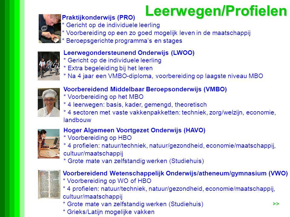 Leerwegen/Profielen