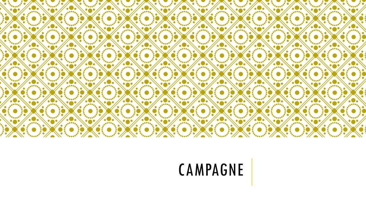 Campagne Vooraf: - Literatuuronderzoek