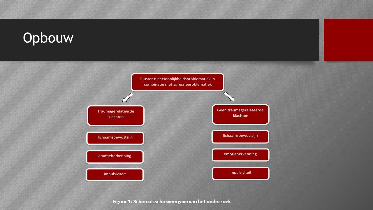 Figuur 1: Schematische weergave van het onderzoek