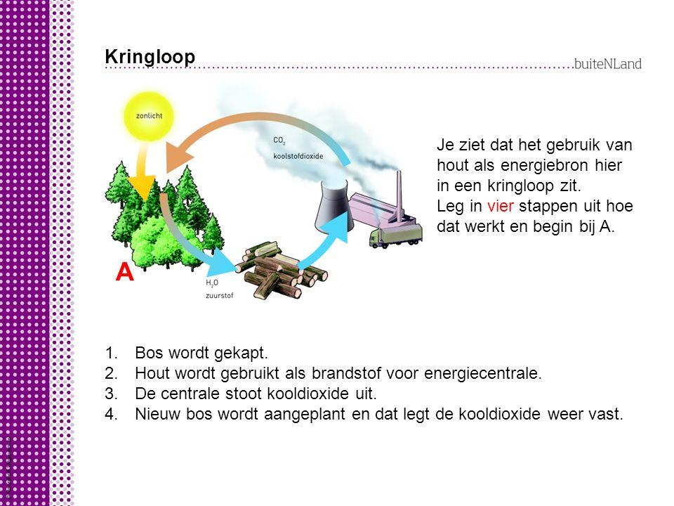 Kringloop Je ziet dat het gebruik van hout als energiebron hier in een kringloop zit. Leg in vier stappen uit hoe dat werkt en begin bij A.