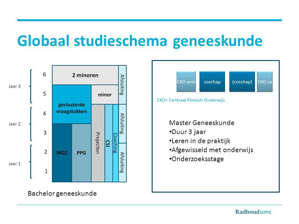 Globaal studieschema geneeskunde