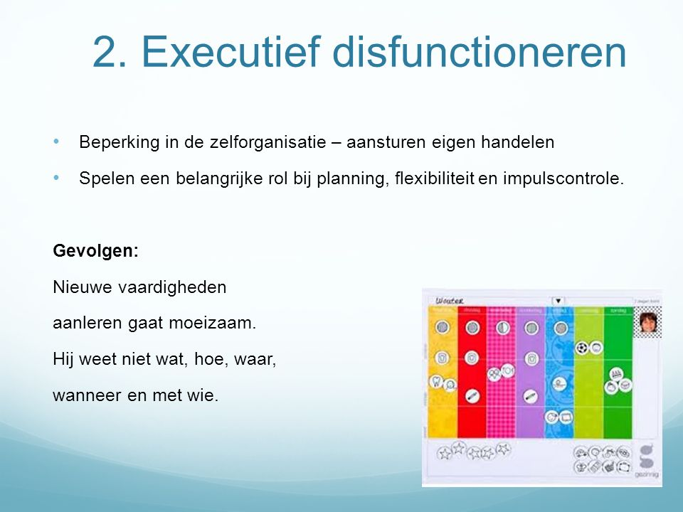2. Executief disfunctioneren