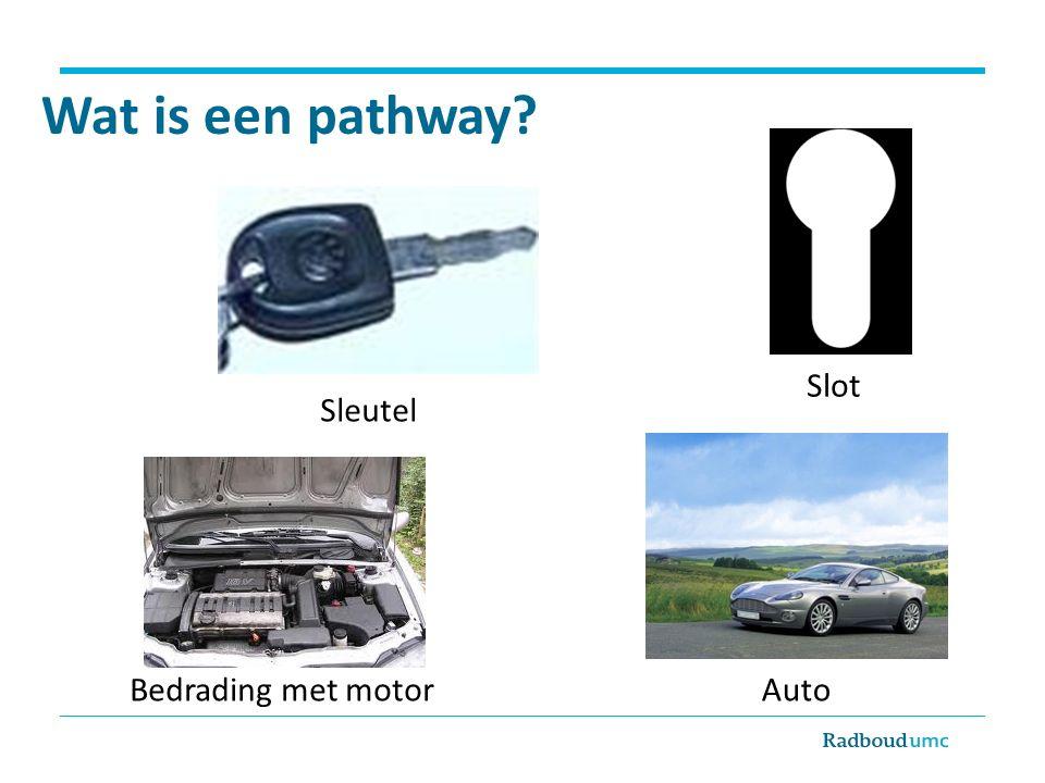 Wat is een pathway Slot Sleutel Bedrading met motor Auto