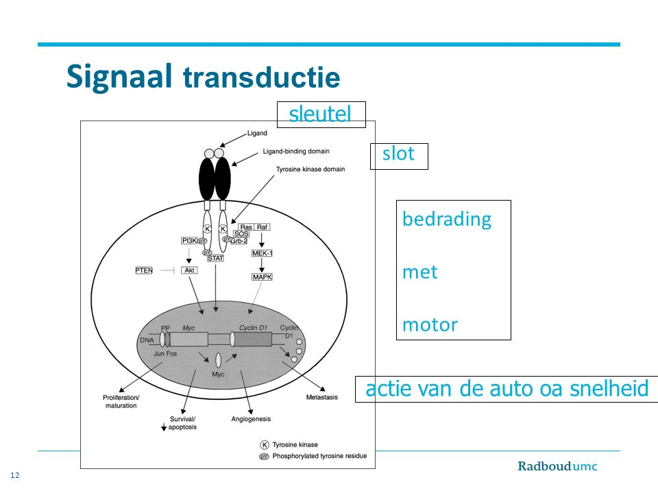 Signaal transductie sleutel slot bedrading met motor