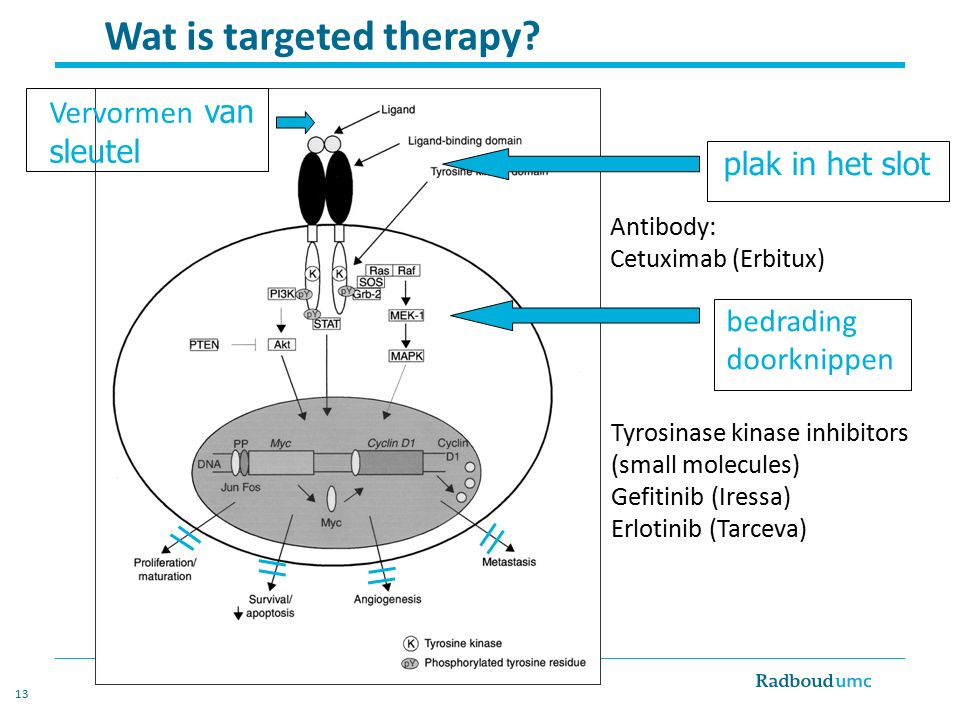 Wat is targeted therapy