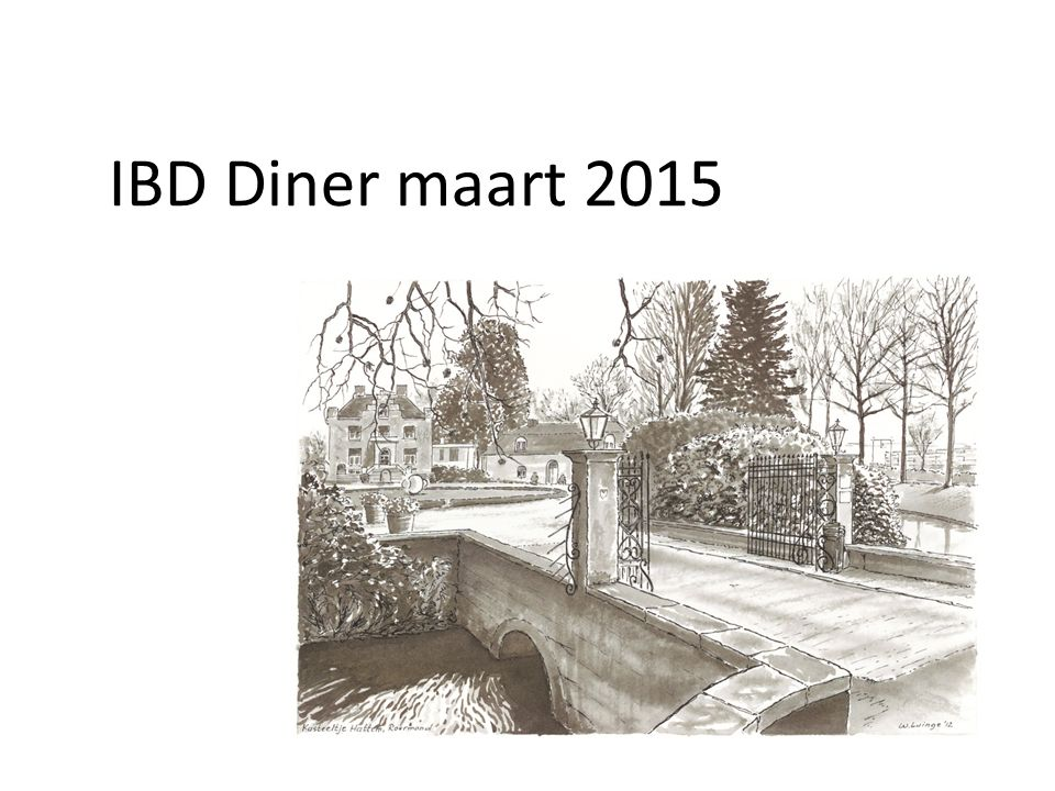 IBD Diner maart 2015