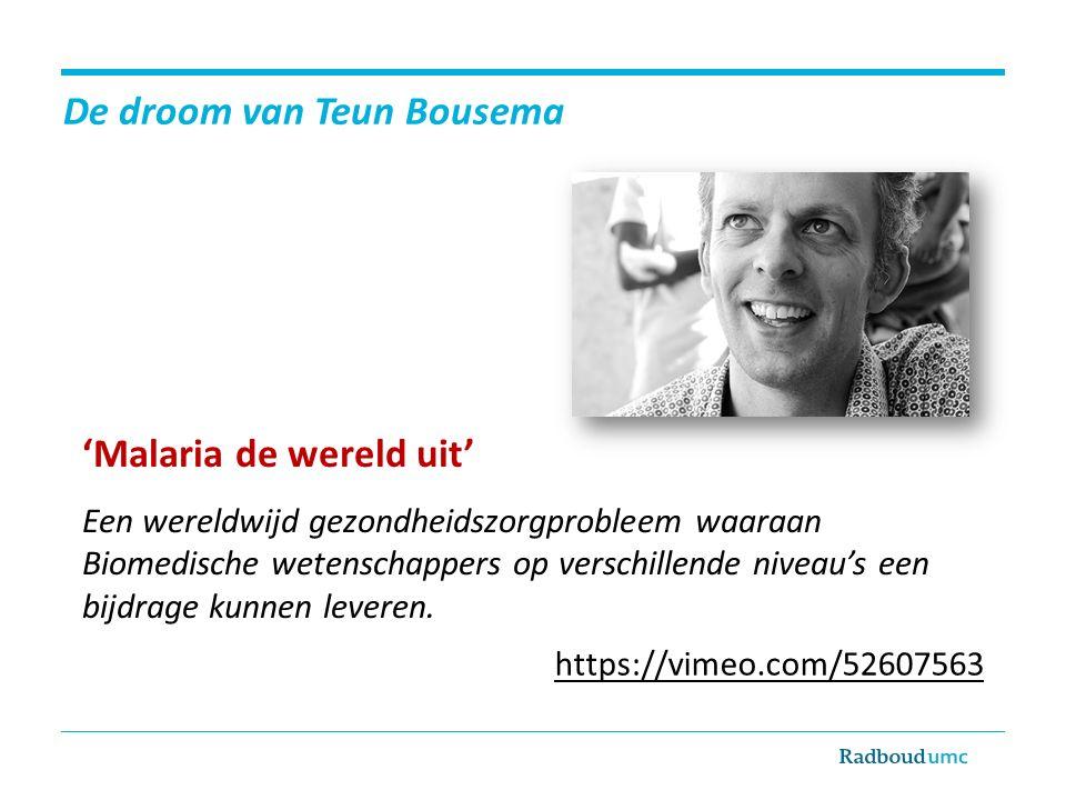 De droom van Teun Bousema
