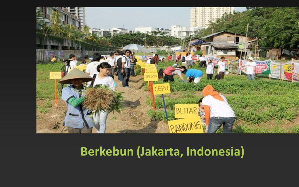Berkebun (Jakarta, Indonesia)