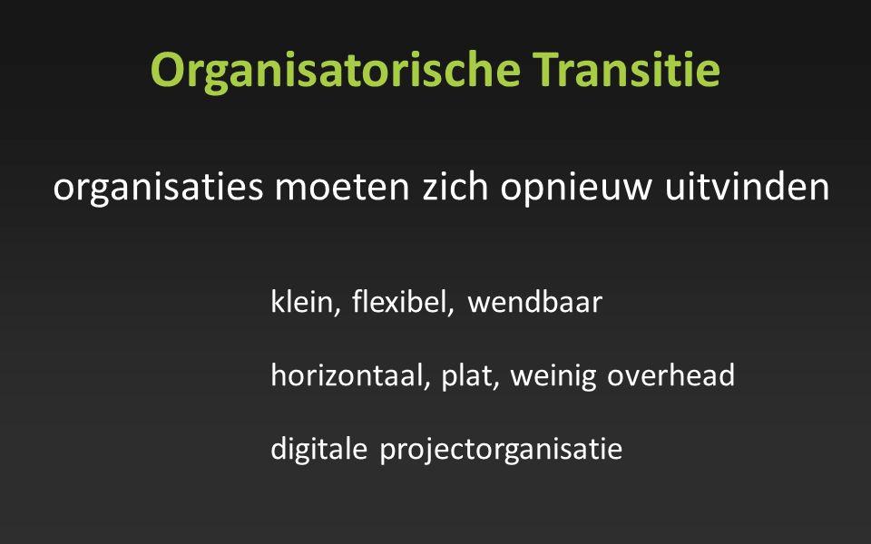 Organisatorische Transitie