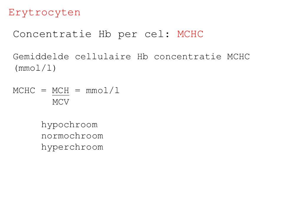 Concentratie Hb per cel: MCHC