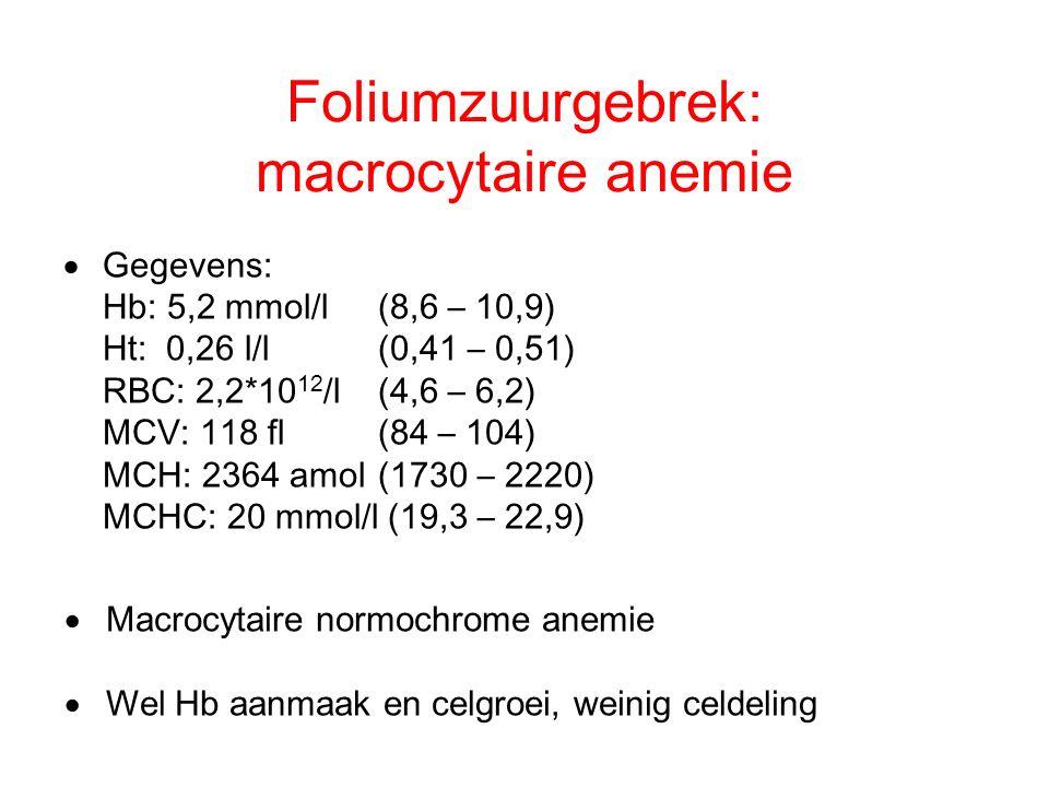 Foliumzuurgebrek: macrocytaire anemie