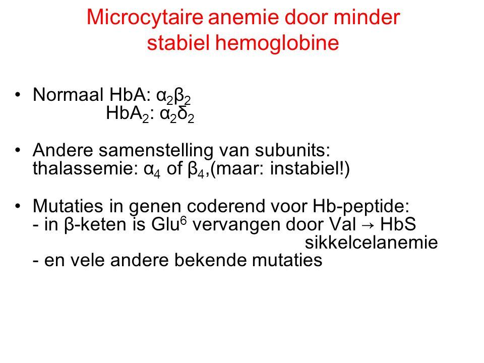 Microcytaire anemie door minder stabiel hemoglobine