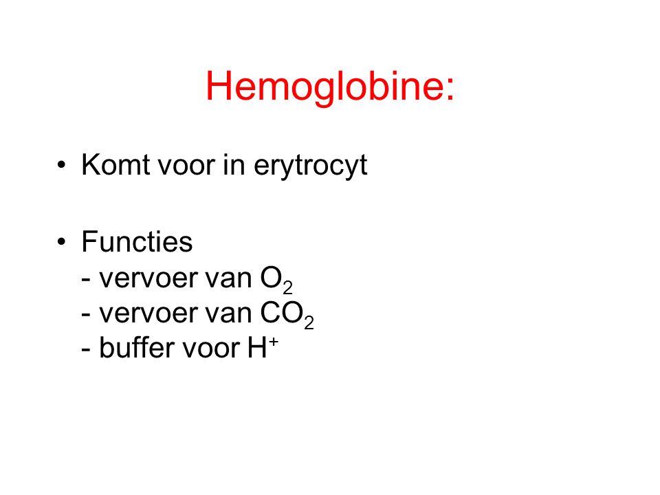 Hemoglobine: Komt voor in erytrocyt
