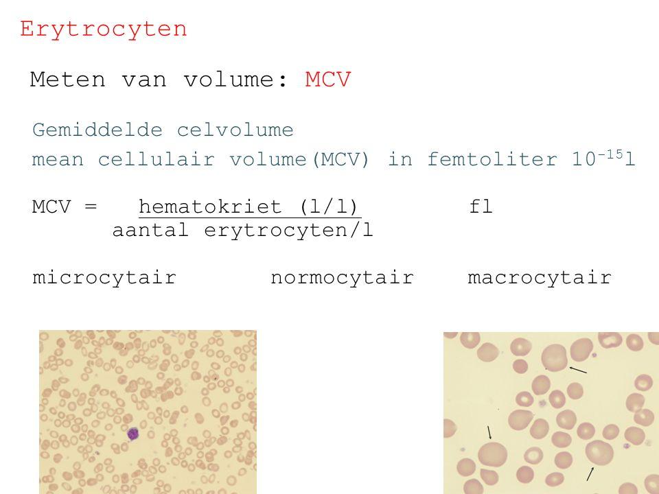 Erytrocyten Meten van volume: MCV Gemiddelde celvolume