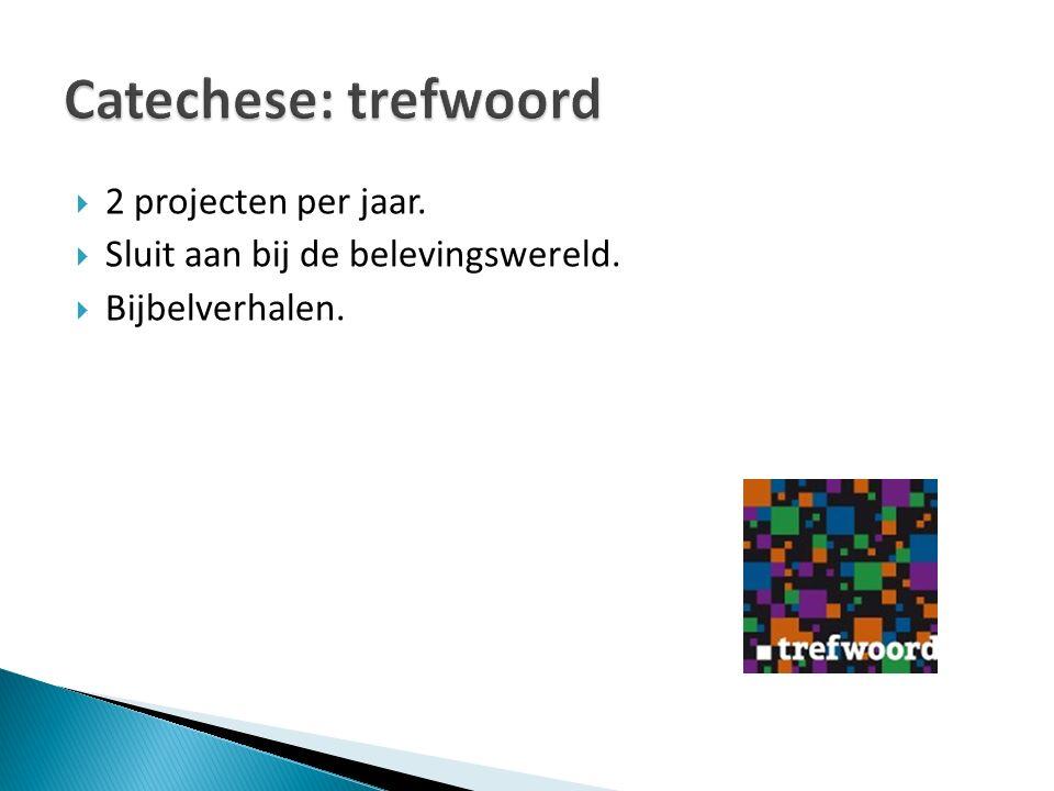 Catechese: trefwoord 2 projecten per jaar.