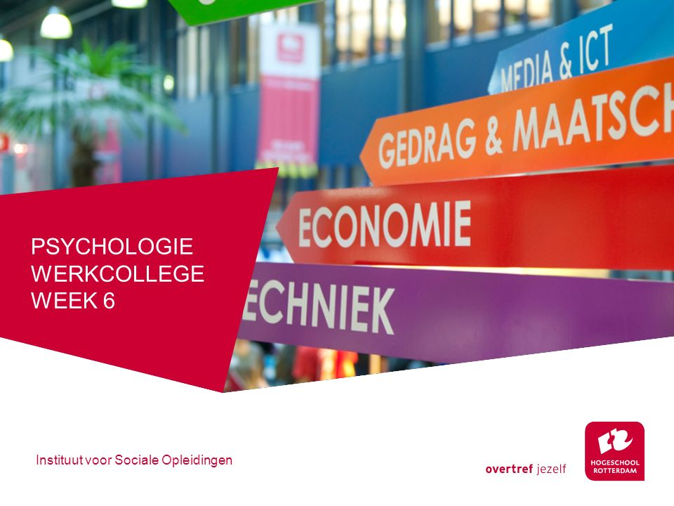 Psychologie werkcollege week 6