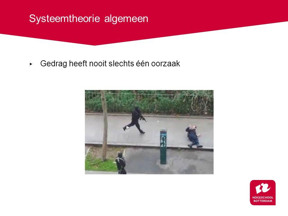 Systeemtheorie algemeen