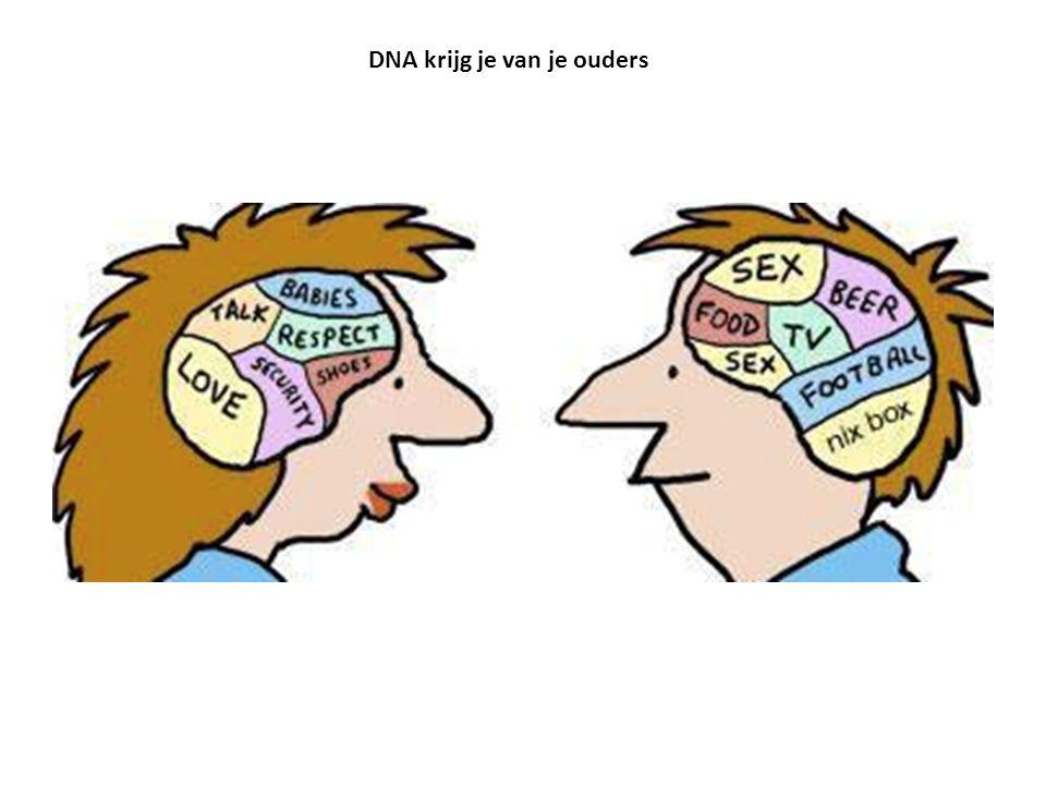 DNA krijg je van je ouders