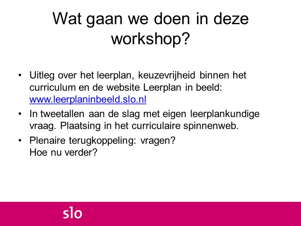 Wat gaan we doen in deze workshop