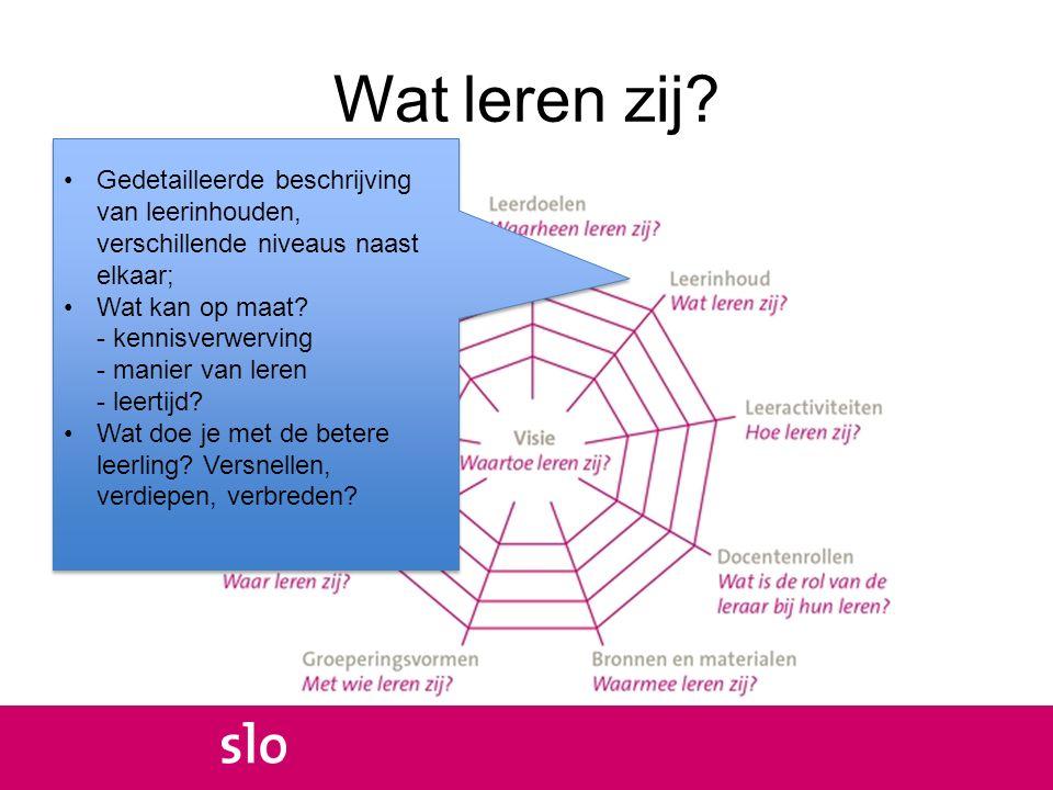 Wat leren zij Gedetailleerde beschrijving van leerinhouden, verschillende niveaus naast elkaar;