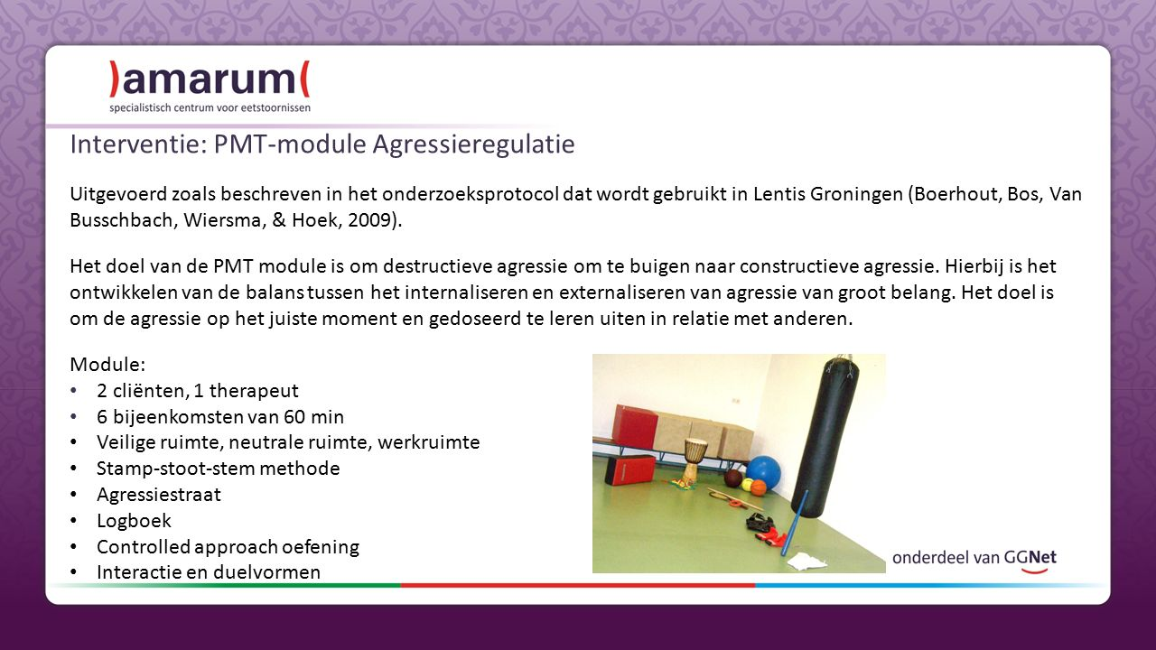 Interventie: PMT-module Agressieregulatie