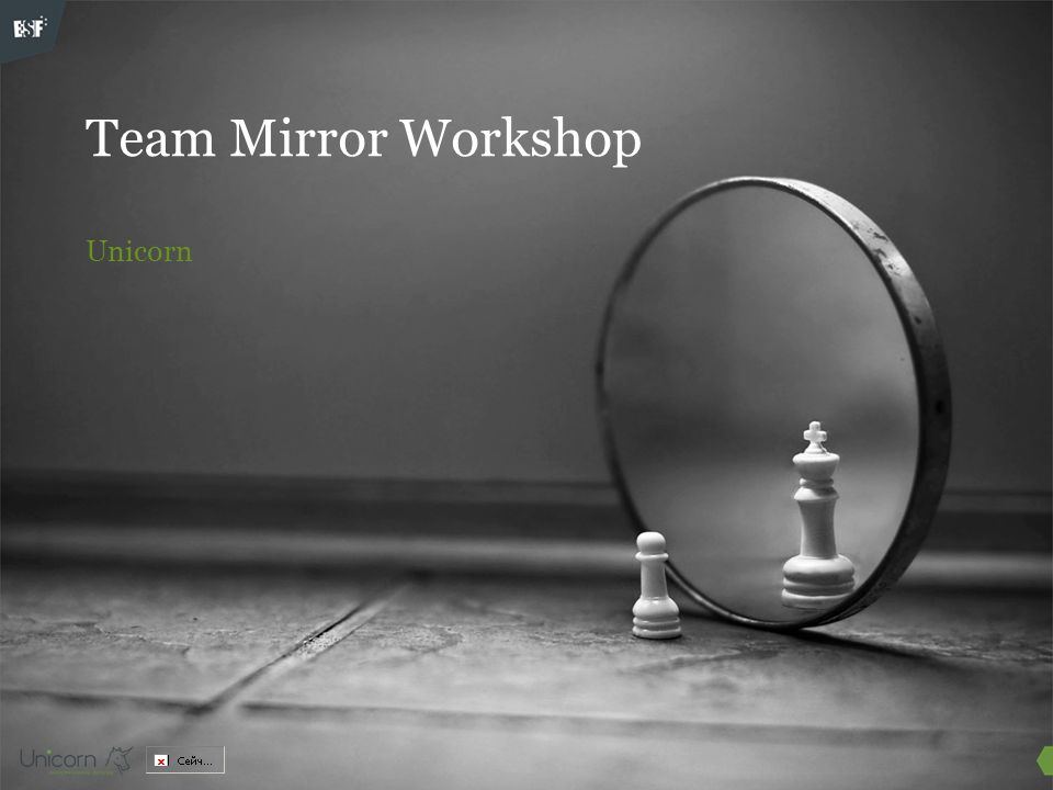 Team Mirror Workshop Unicorn