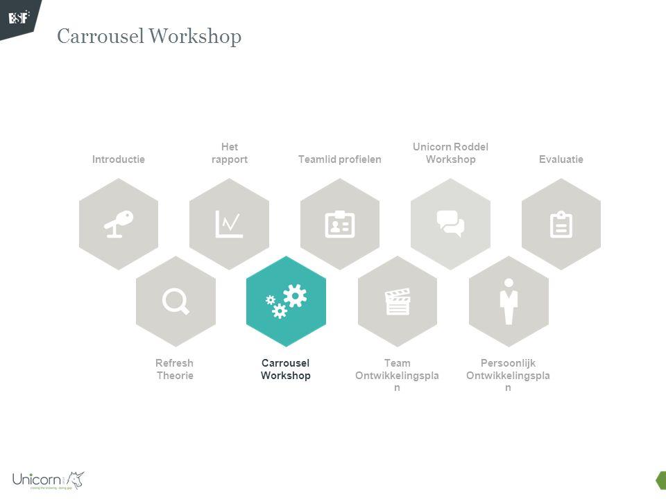 Carrousel Workshop Doel van deze bouwblok: