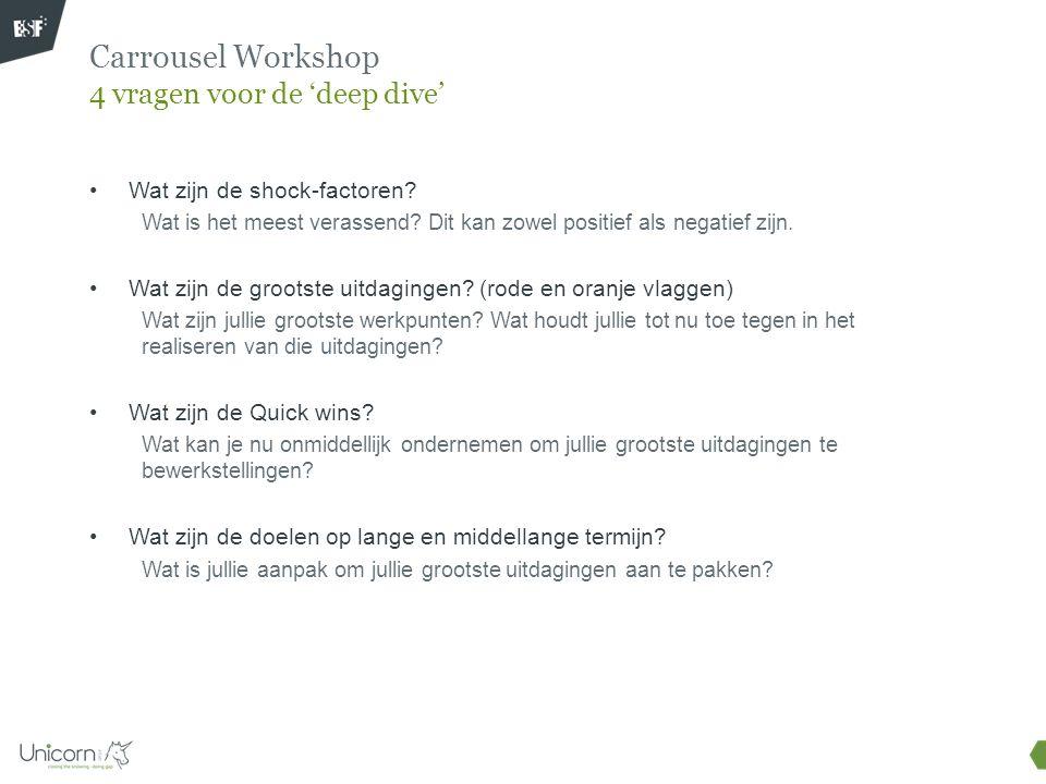 Carrousel Workshop 4 vragen voor de 'deep dive'