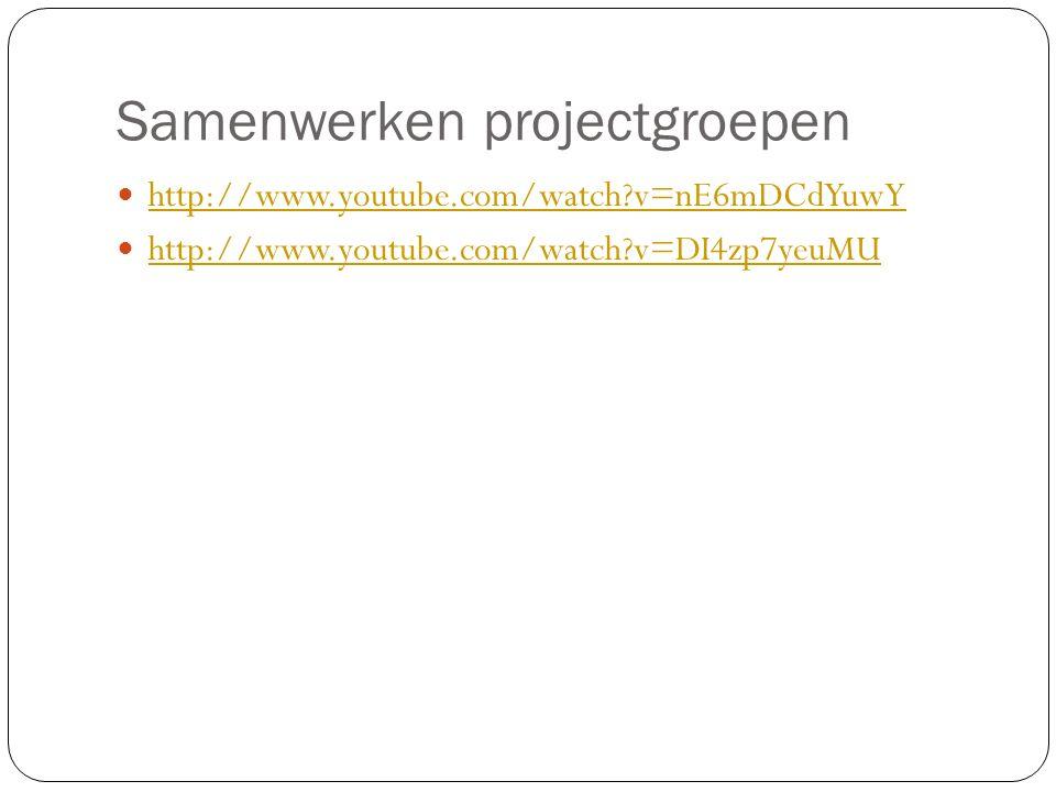 Samenwerken projectgroepen