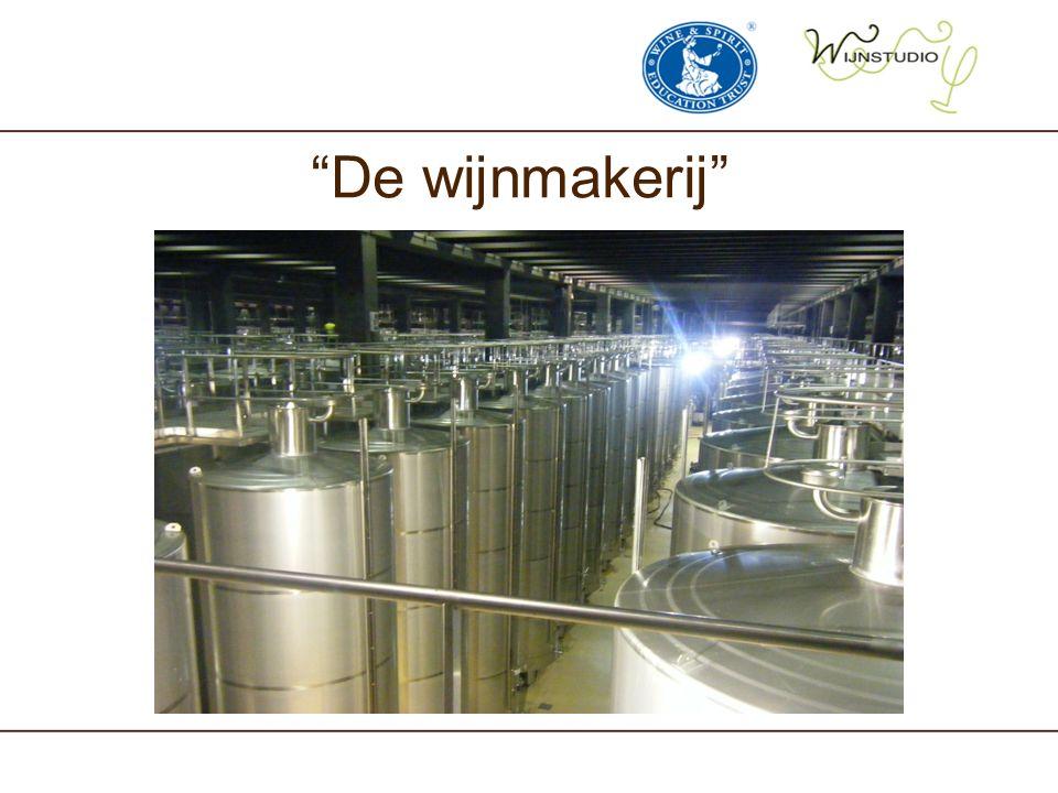 De wijnmakerij