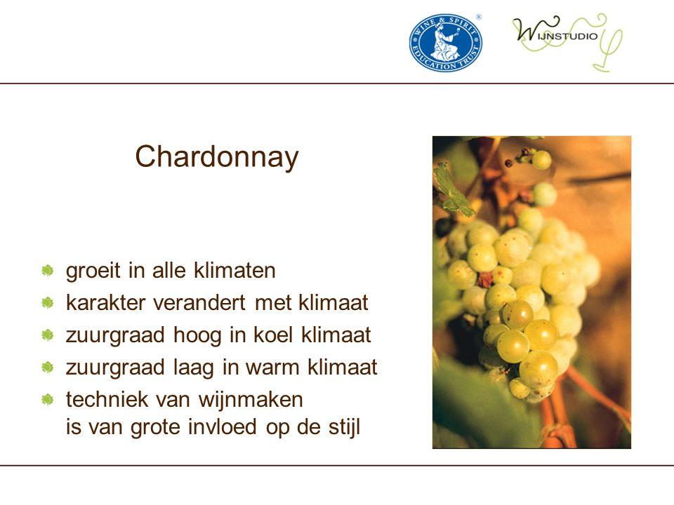 Chardonnay groeit in alle klimaten karakter verandert met klimaat